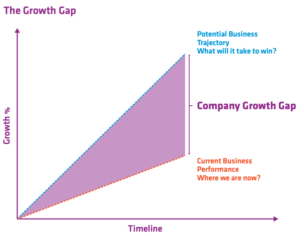 The Growth Gap
